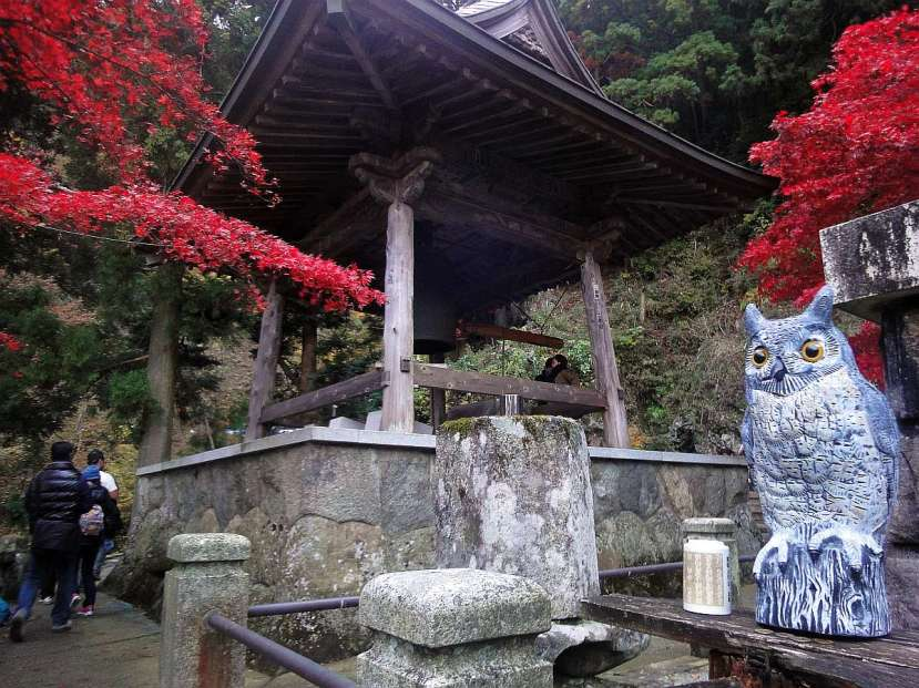 monte oyama cima templo búho