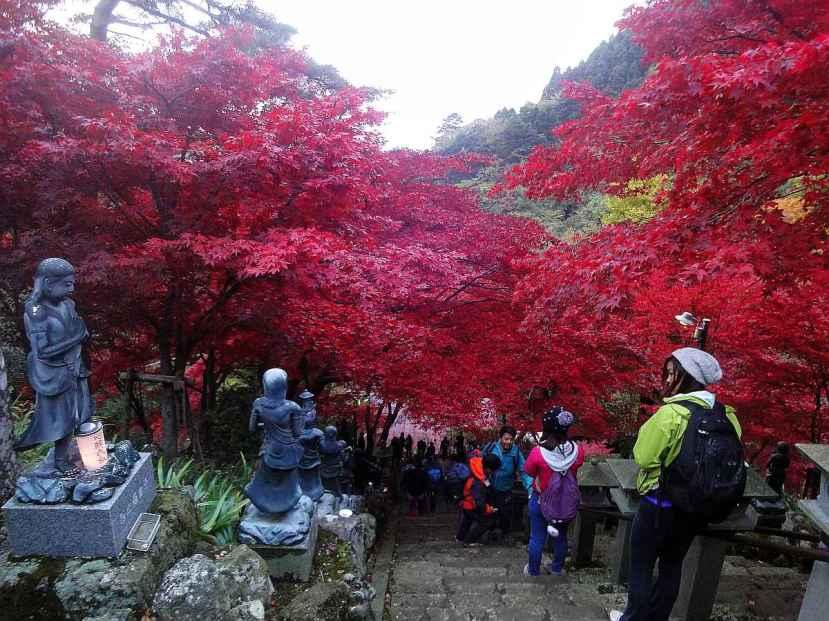 monte oyama momiji tonos rojizos 3
