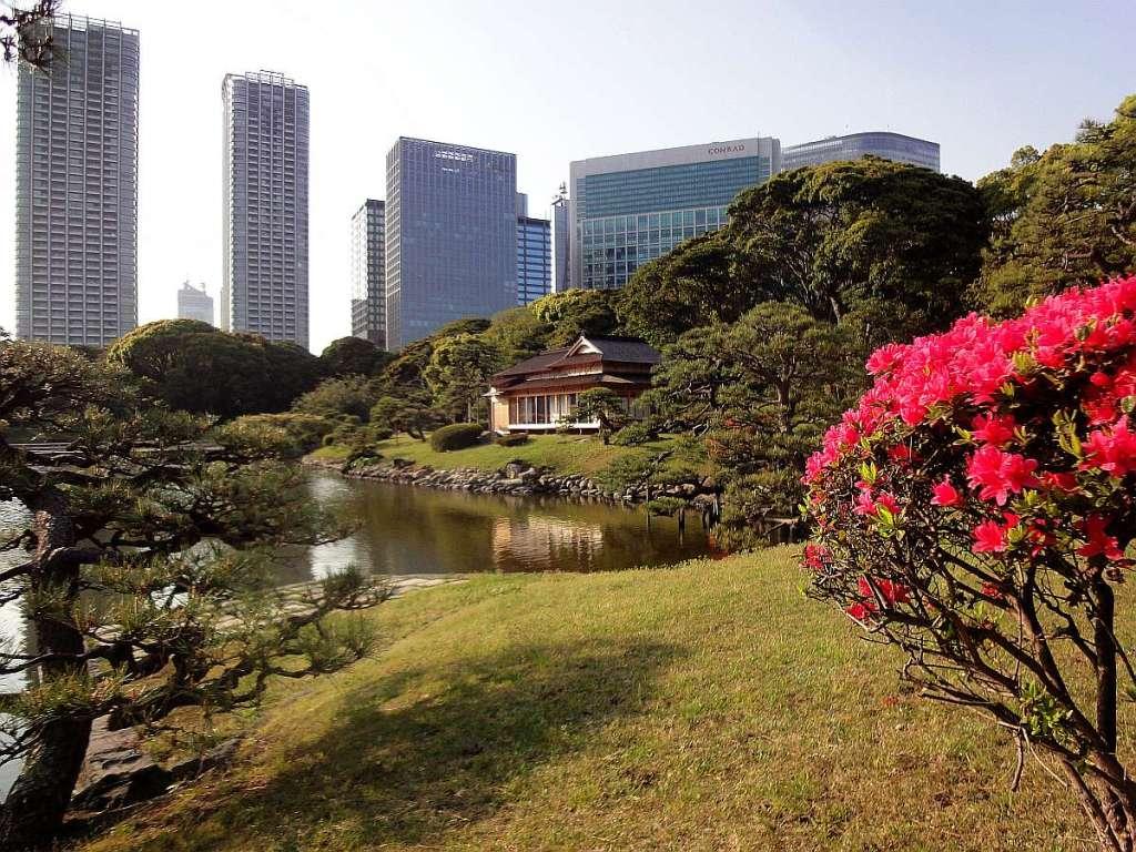 jardines Hamarikyu shinbashi tokyo