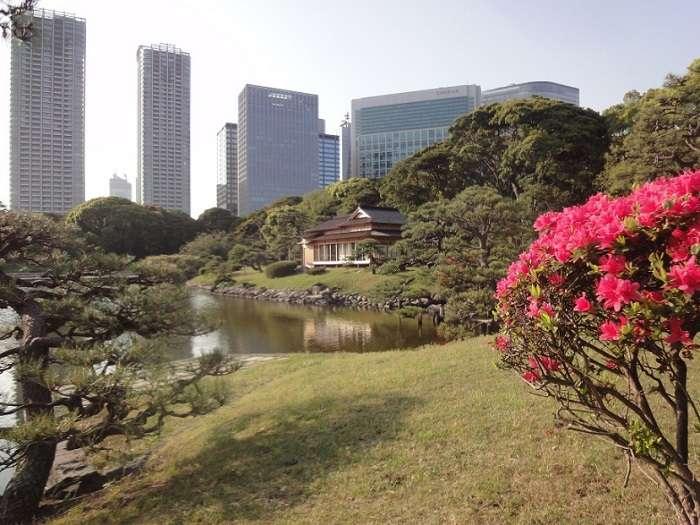 parque shinbashi