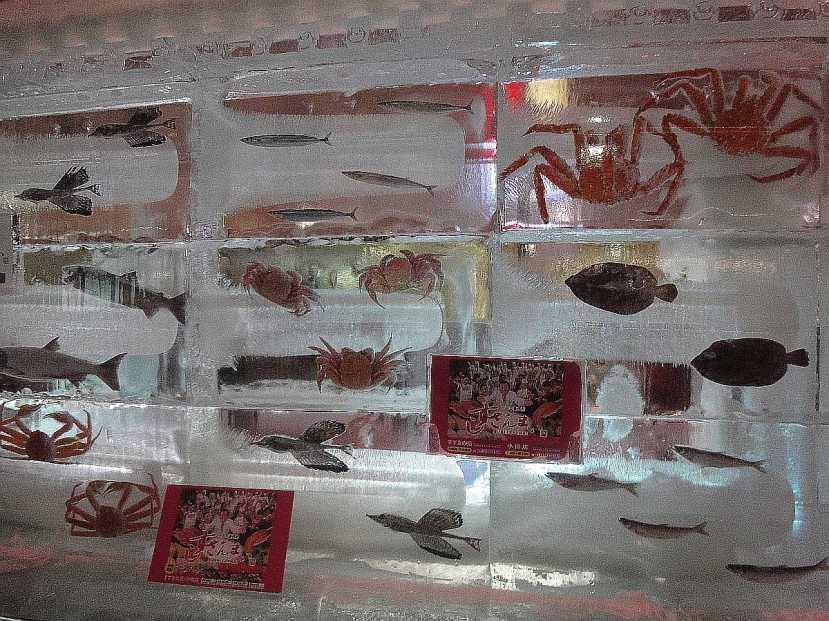 yuki matsuri susukino estructuras hielo