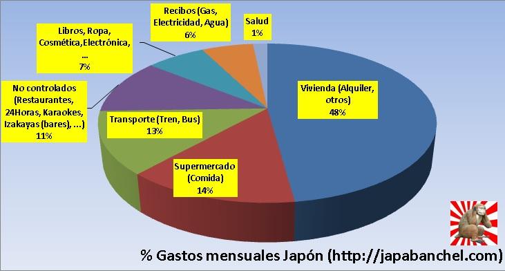 Gastos de 1 año viviendo en Japón estudiando sin trabajar. Gráfica de sectores porcentuales con gastos mensuales totales durante un año en Tokyo.