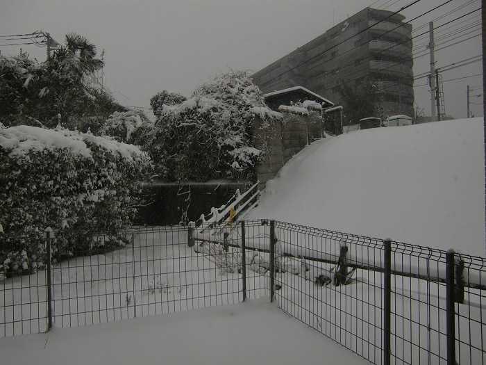 nieve_en-tokyo-la-otra-gran-nevada-en-japon-0137
