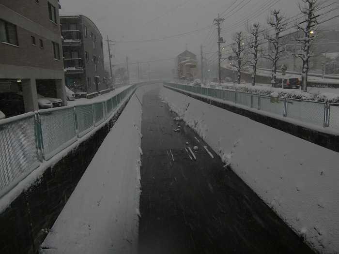nieve_en-tokyo-la-otra-gran-nevada-en-japon-0146
