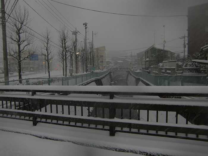 nieve_en-tokyo-la-otra-gran-nevada-en-japon-0147