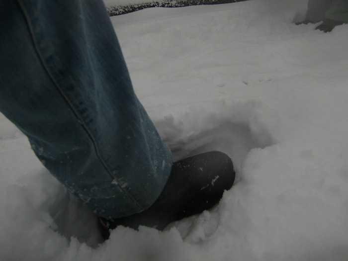 nieve_en-tokyo-la-otra-gran-nevada-en-japon-0148