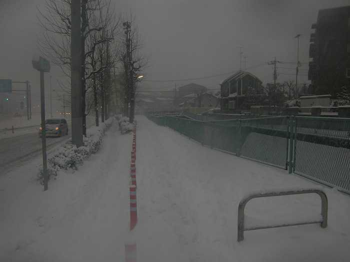 nieve_en-tokyo-la-otra-gran-nevada-en-japon-0150
