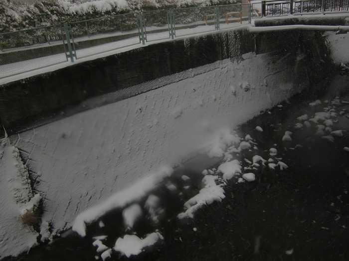 nieve_en-tokyo-la-otra-gran-nevada-en-japon-0155