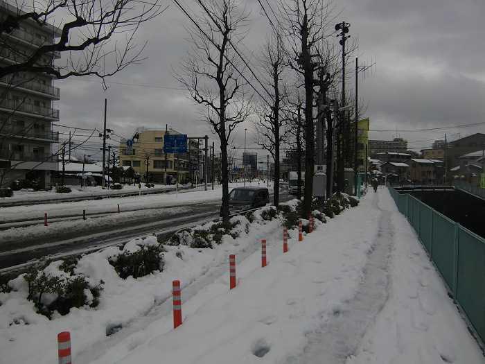 nieve_en-tokyo-la-otra-gran-nevada-en-japon-0178
