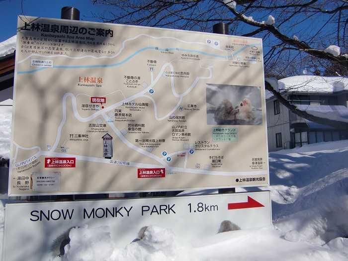 Camino desde Kanbayashi Onsen hacia la entrada del Snow Moneky Park. 1,8 kilometros