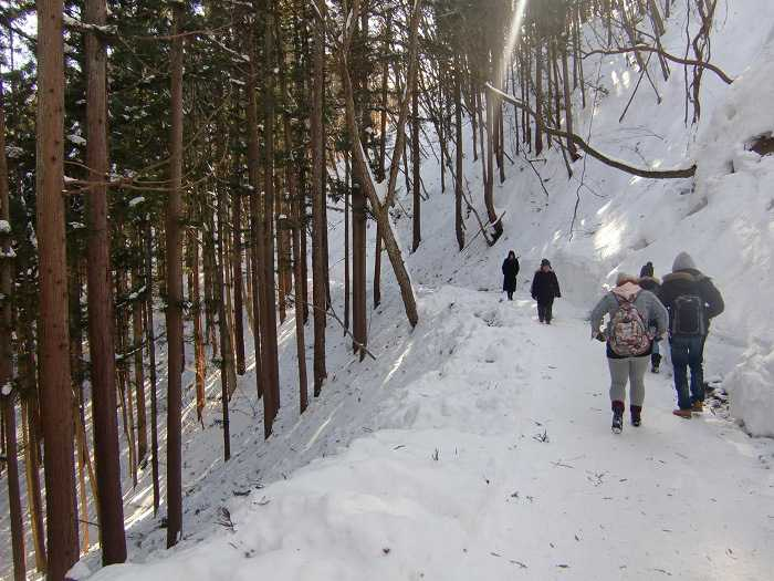 jigokudani_moneky_park_y_visita_a_nagano_007_camino_final_a_snow_monkey_park_011