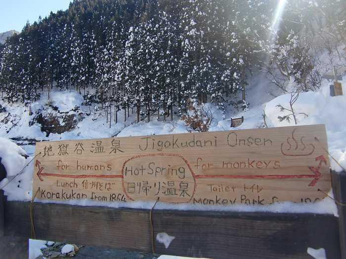 jigokudani_moneky_park_y_visita_a_nagano_007_camino_final_a_snow_monkey_park_04