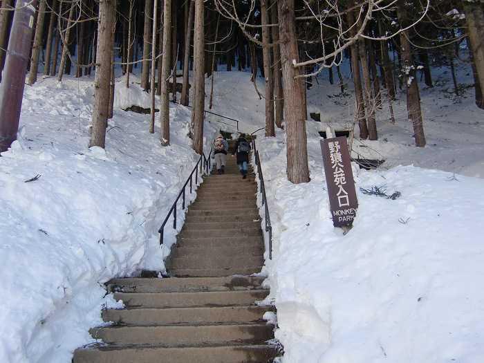 jigokudani_moneky_park_y_visita_a_nagano_007_camino_final_a_snow_monkey_park_05