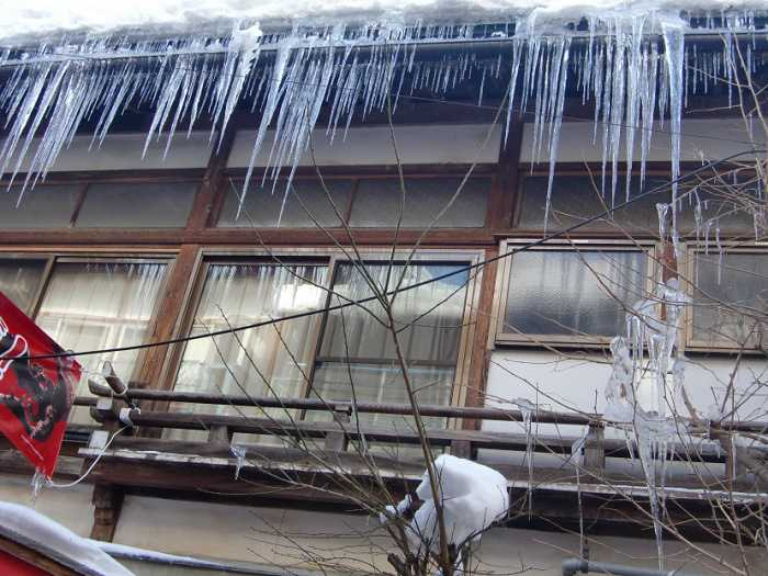 snow-monkeys-monos-nagano-yudanaka-shibu-onsen-007-pueblo-shibun-onsen-012