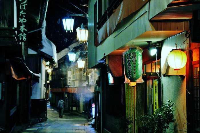 snow-monkeys-monos-nagano-yudanaka-shibu-onsen-noche-0051