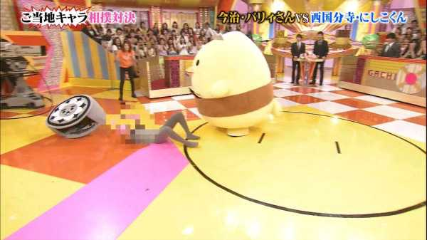 combate-de-sumo-de-mascotas-barisan-vsnishikokun
