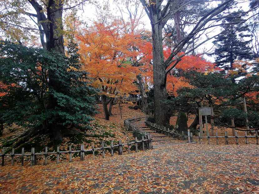 jardin Kenrokuen kanazawa hojarasca amarilla