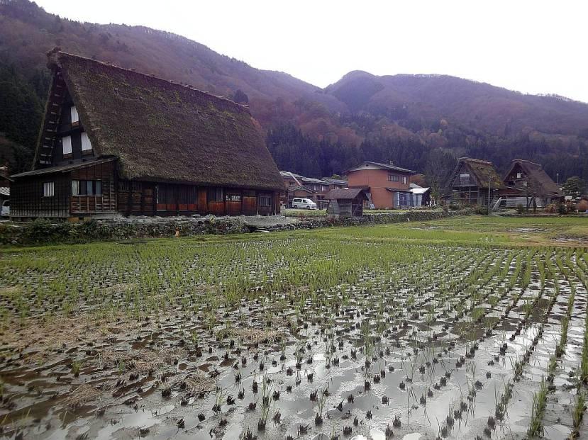 shirakawa minka casas arquitectura gasshou zukuri 5
