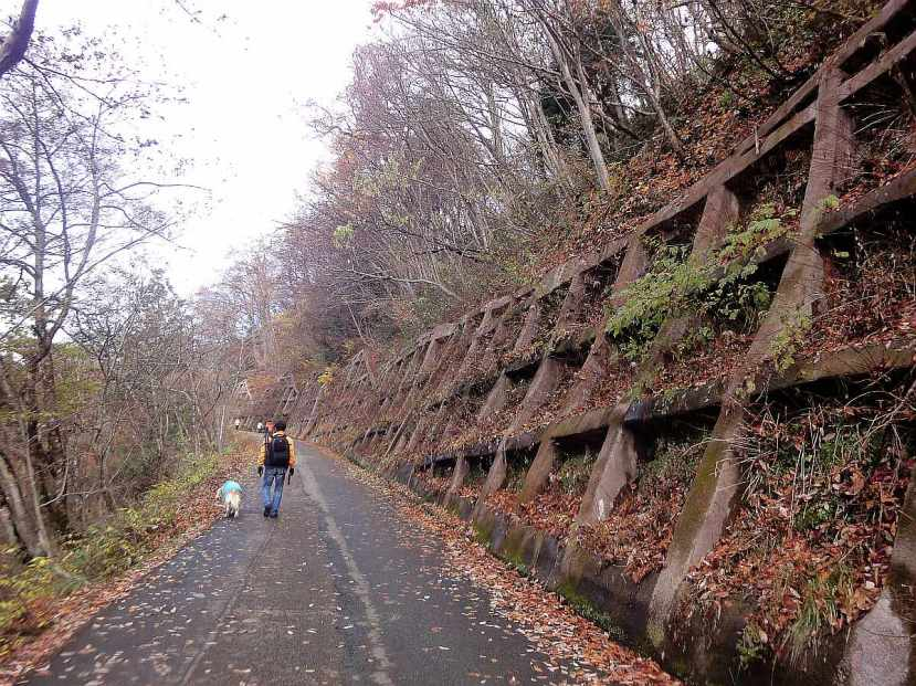 shirakawago camino hacia mirador