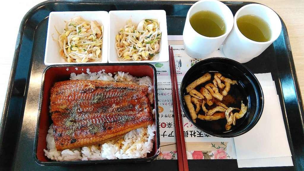 comida rakuten oficina Shinagawa Seaside unagi anguila
