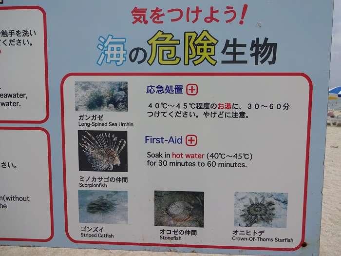 Peces peligrosos cartel Nagannu