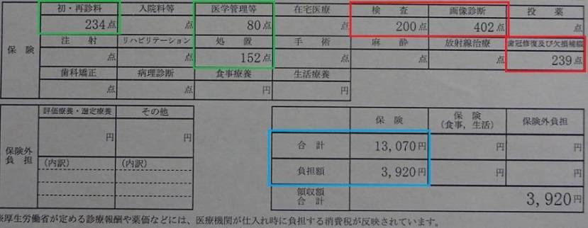 Visita 1 al dentista japon