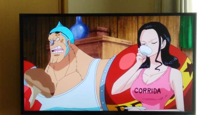 One Piece Corrida