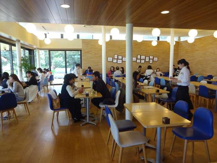 cafeteria museo doraemon