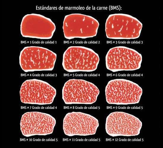 marmoleo carne estandar bms